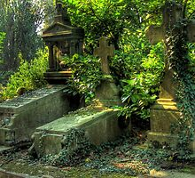 Nature overcoming graves by polanri