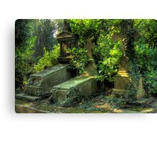Nature overcoming graves Canvas Print