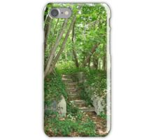 Nature Reclaims iPhone Case/Skin
