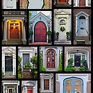 Doors of Charleston by Michael Rubin