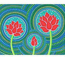 Lotus Family of Three Photographic Print