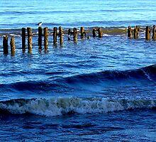 Sandsend  Sea Defence by Trevor Kersley