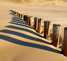 Verticals and diagonals by Adri  Padmos