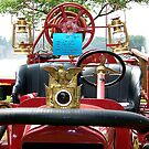 1918 Ford/Howe fire engine hood ornament by mstinak