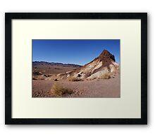 Desert Brush Framed Print