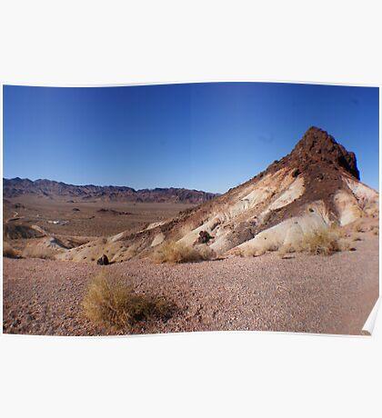 Desert Brush Poster