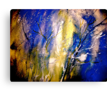 Winter...The First Day Canvas Print