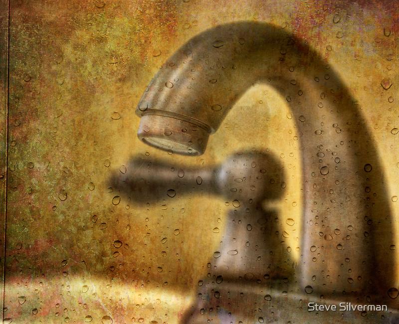 Plumbing Art # 2 by Steve Silverman