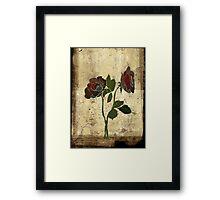 2 roses - valentine day Framed Print