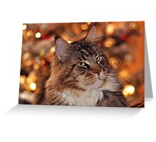 Maine Coon by the Christmas Tree Greeting Card