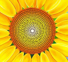 Beautiful sunflower of summer by Elspeth McLean