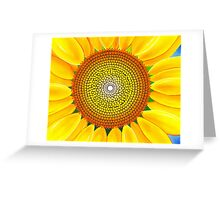 Beautiful sunflower of summer Greeting Card