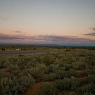 Sunset in the bush by davecourt