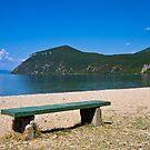 Lake Ohrid Beach by Nickolay Stanev
