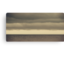 The Storm Came With Fury Canvas Print