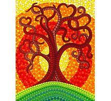 Autumn Illuminated Tree Photographic Print