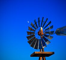 Windmill Moon by Bob Larson