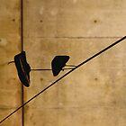 Ruben Daniel Mascaro Photography - Australia & China by Ruben D. Mascaro