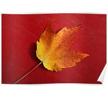 Autumn Leaf On Red Poster