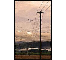 """The way home""  Tweed Valley, Australia Photographic Print"