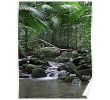 River - Mossman Gorge, Far North Queensland Poster
