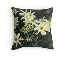 All the lovely Daisies..all in a Row Throw Pillow