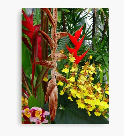 Exotic Gifts Canvas Print