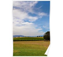 Yarra Valley Vineyard Poster