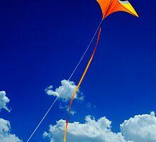 going up? by Mark Malinowski