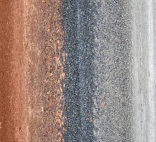 Road Verge by Shelley Heath
