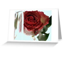 New Flower Project 104 Greeting Card