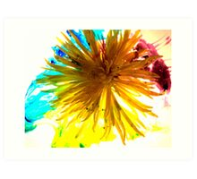 New Flower Project 122 Art Print