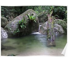 Waterfall - Mossman Gorge, Far North Queensland Poster