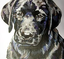 Black lab puppy by artist Debbie Boyle - db artstudio by Deborah Boyle