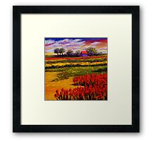 Red Tulips in the Netherlands Framed Print
