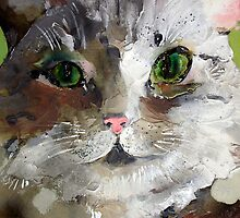 gattone by Nicoletta Belletti