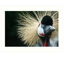 Wacky Bird - Bad hair day.  Art Print