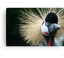 Wacky Bird - Bad hair day.  Canvas Print