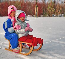 A sleigh ride..... by Adri  Padmos