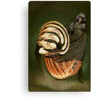 Twirly Whirly Bird. Canvas Print