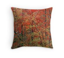 Autumn at Its Best in Vermont Throw Pillow