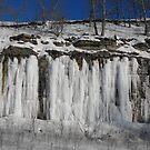 Frozen Cascades by Tracy Wazny