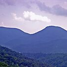 *THE BLUE RIDGE MOUNTAINS* by Van Coleman