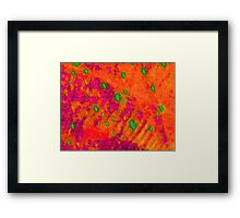 Orange Abstract Tapestry Framed Print