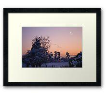 Snow Flock Framed Print