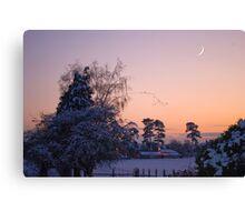 Snow Flock Canvas Print