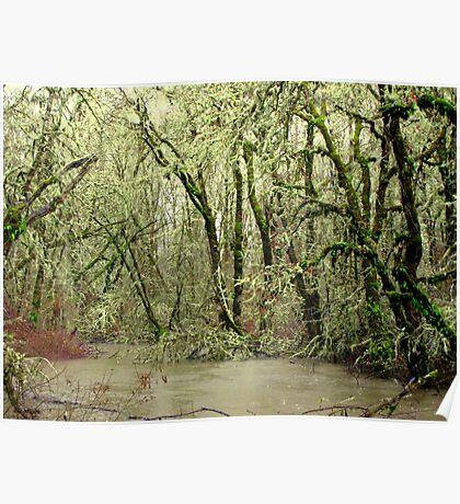Forest Flood Poster