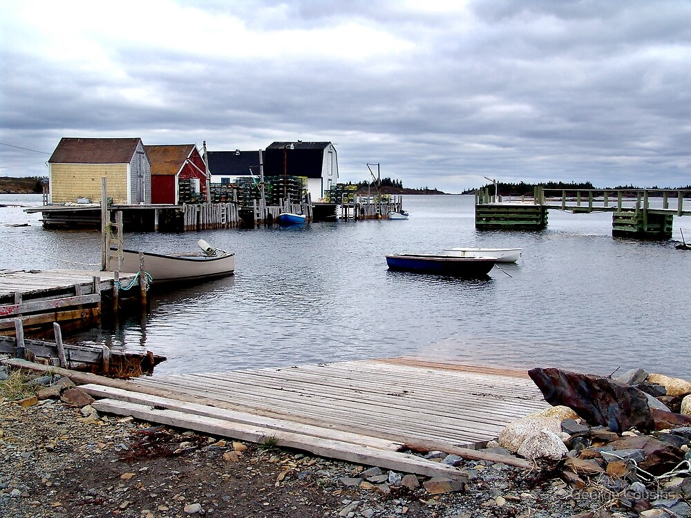 Fishing Sheds,Blue Rocks by George Cousins
