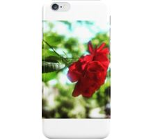 A Rose from the Heavens.  iPhone Case/Skin