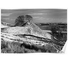 Northumberland Landscape, Northern England Poster
